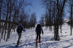 Ski-Offpiste-106